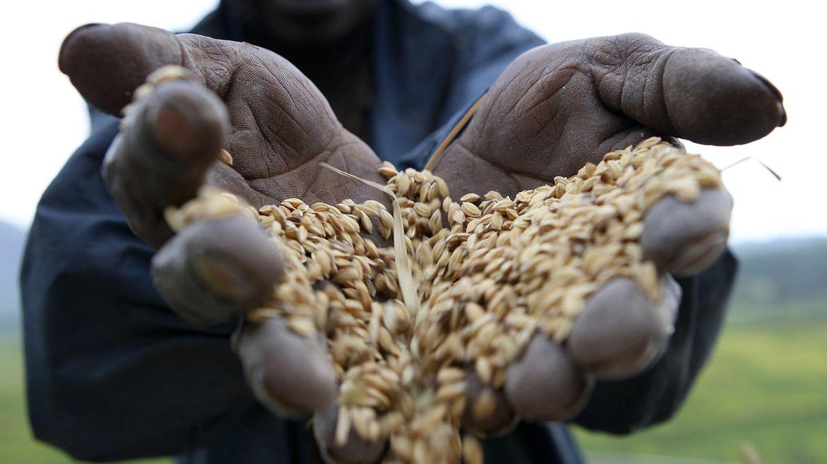Die Corona Pandemie hat schwere Auswirkungen auf die weltweite Hungerbekämpfung.