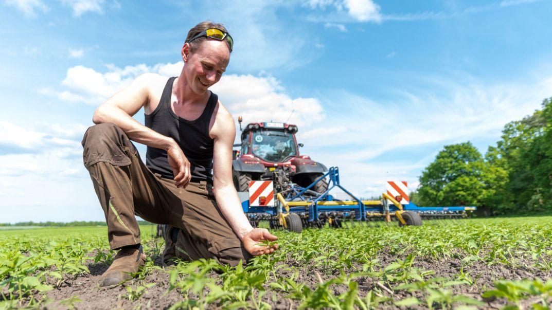 Ein Mann sitzt hinter einem Traktor auf einem Feld