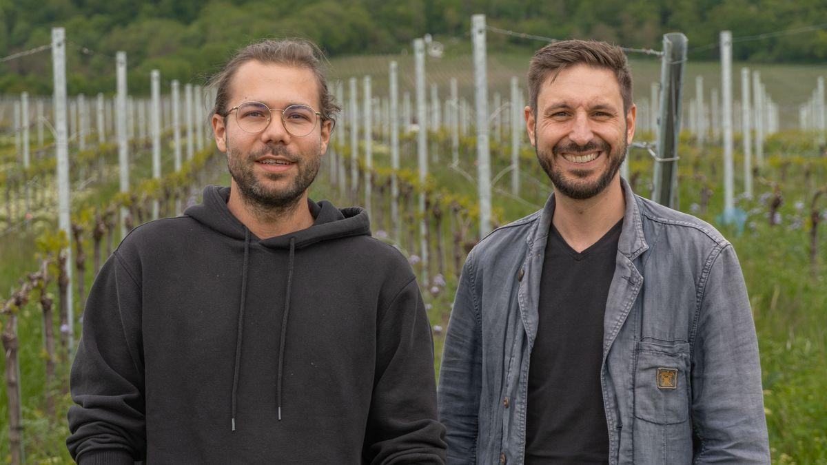 """Dominik Quambusch (l.) und Simon Illner stehen vor einem Weinberg. Sie haben mit zwei weiteren Freunden die Plattform """"AlpacaCamping"""" gegründet."""