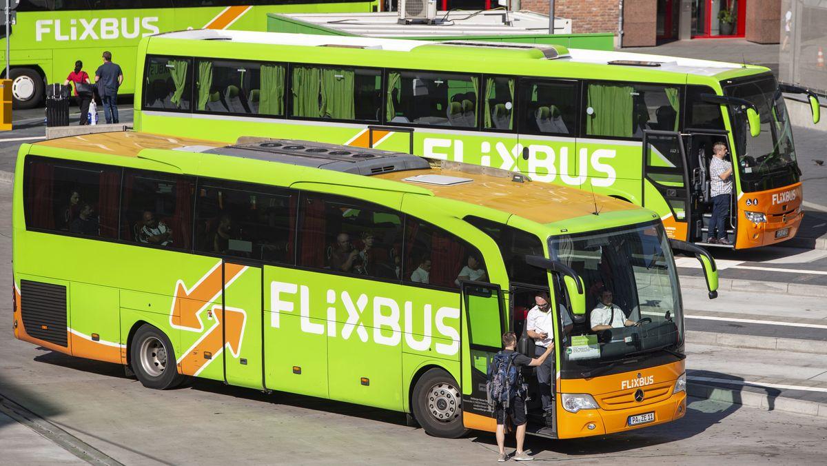 Flixbusse am Fernbusbahnhof in Frankfurt am Main an der Stuttgarter Straße 26 (Archivbild)