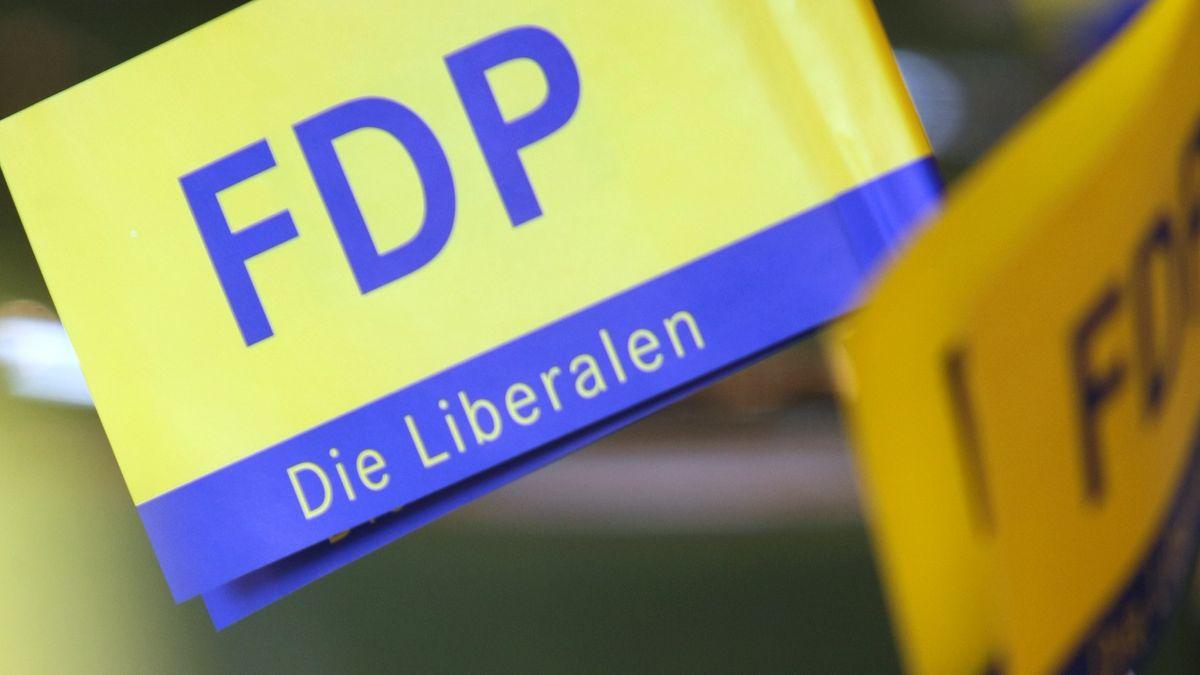 Fähnchen der FDP auf einem Parteitag (Archivbild).