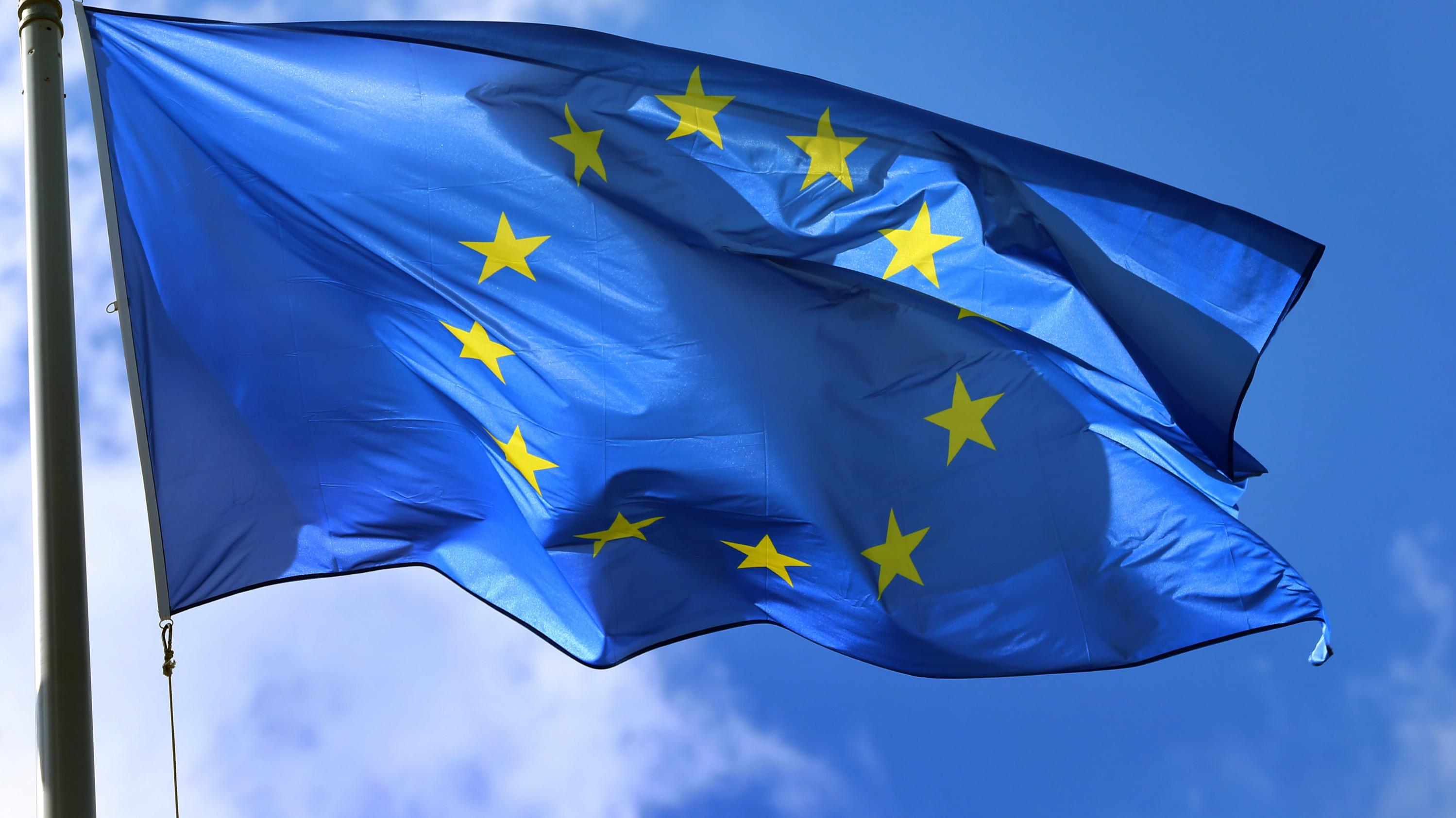 EU-Flagge (Archiv)
