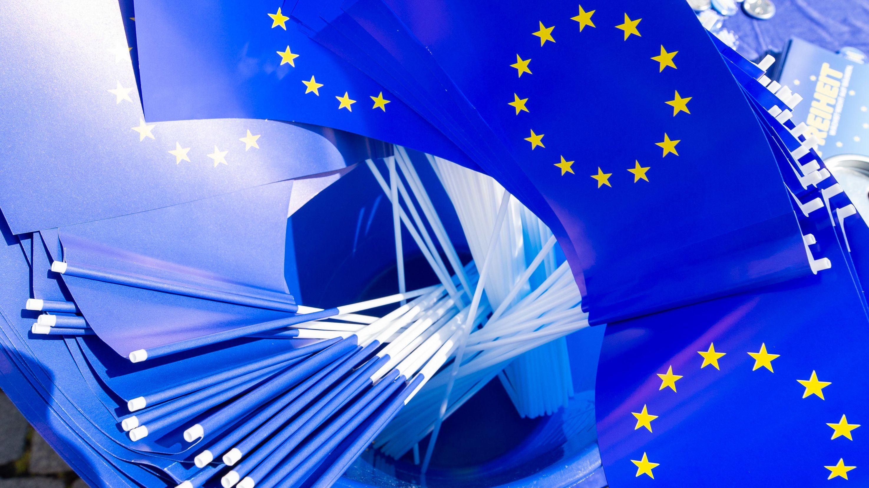 Symboldbild: EU-Fähnchen in einem Eimer