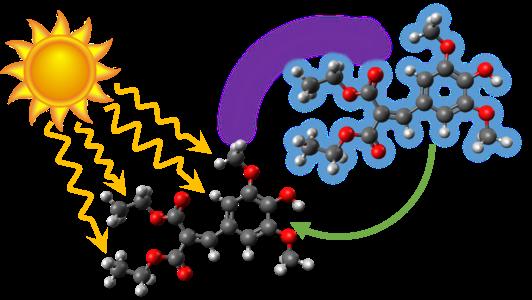 Mit superschnellen Drehbewegungen, die den Handbewegungen einer Flamenco-Tänzerin ähneln, wandelt das Molekül Diethyl-Sinapinsäure aufgenommene UV-Strahlung in Schwingungsenergie um: Hitze.