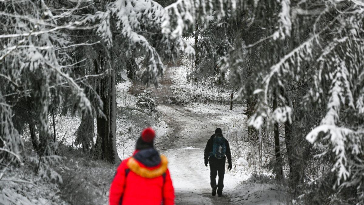 Spaziergänger im verschneiten Bayerischen Wald