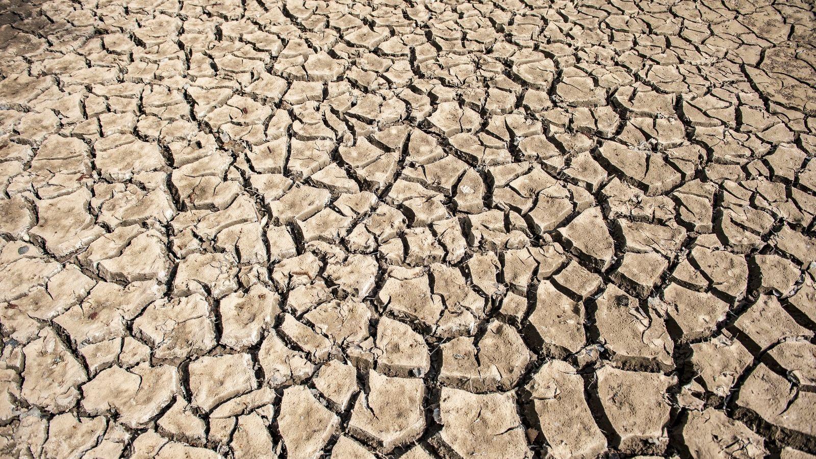 Folgen der Hitzesommer: Trockenheit in der Tiefe