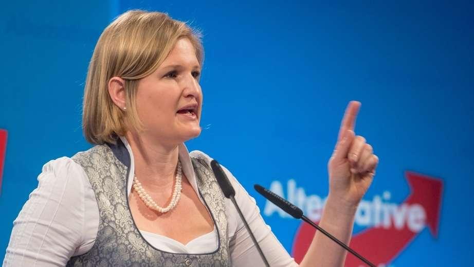 Katrin Ebner-Steiner, AfD