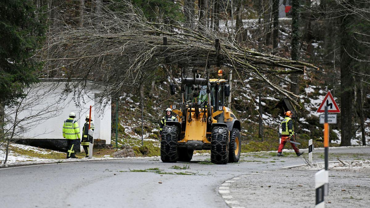 """Feuerwehrleute räumen Reste eines Baumes, der vom Sturmtief """"Sabine"""" umgerissen worden war, von der Straße zum Eibsee."""