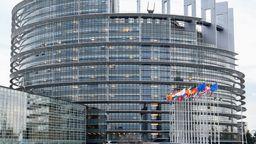 Europaparlament Straßburg | Bild:pa/dpa/Winfried Rothermel