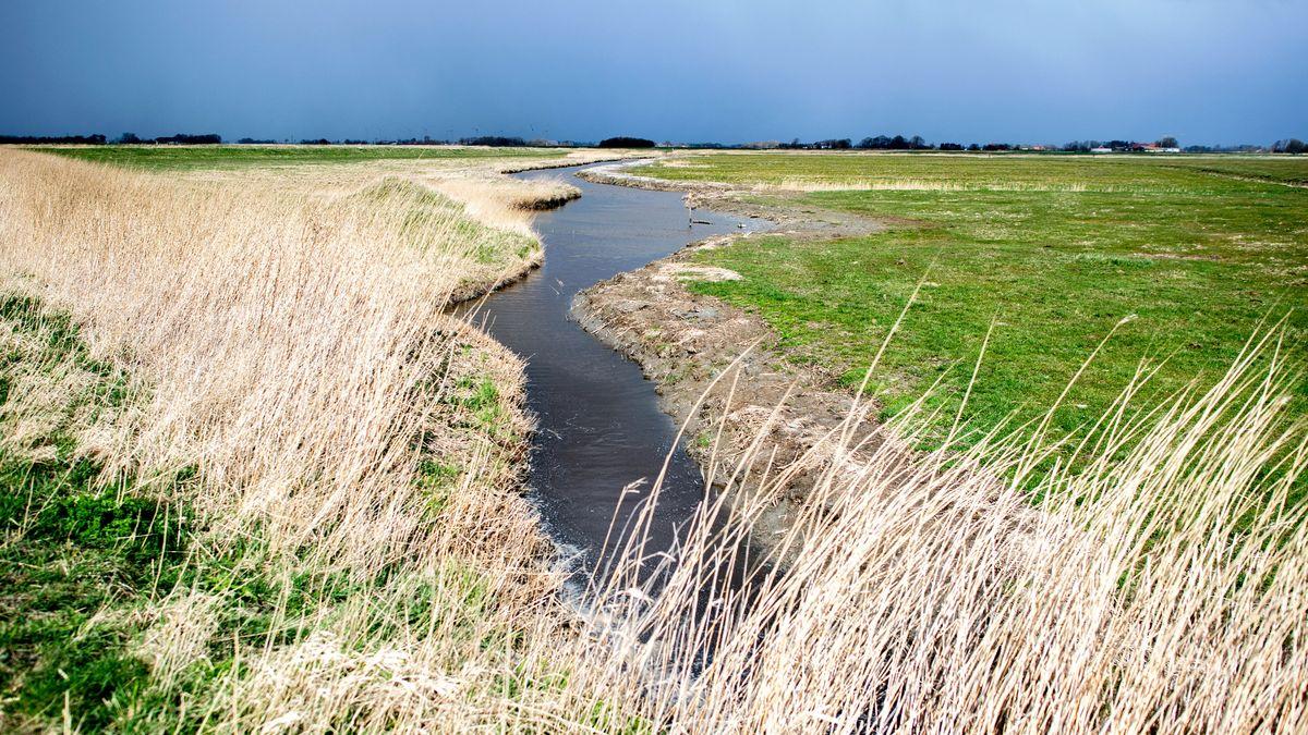 Ein kleiner Fluss schlängelt sich durch Wiesen und Felder.