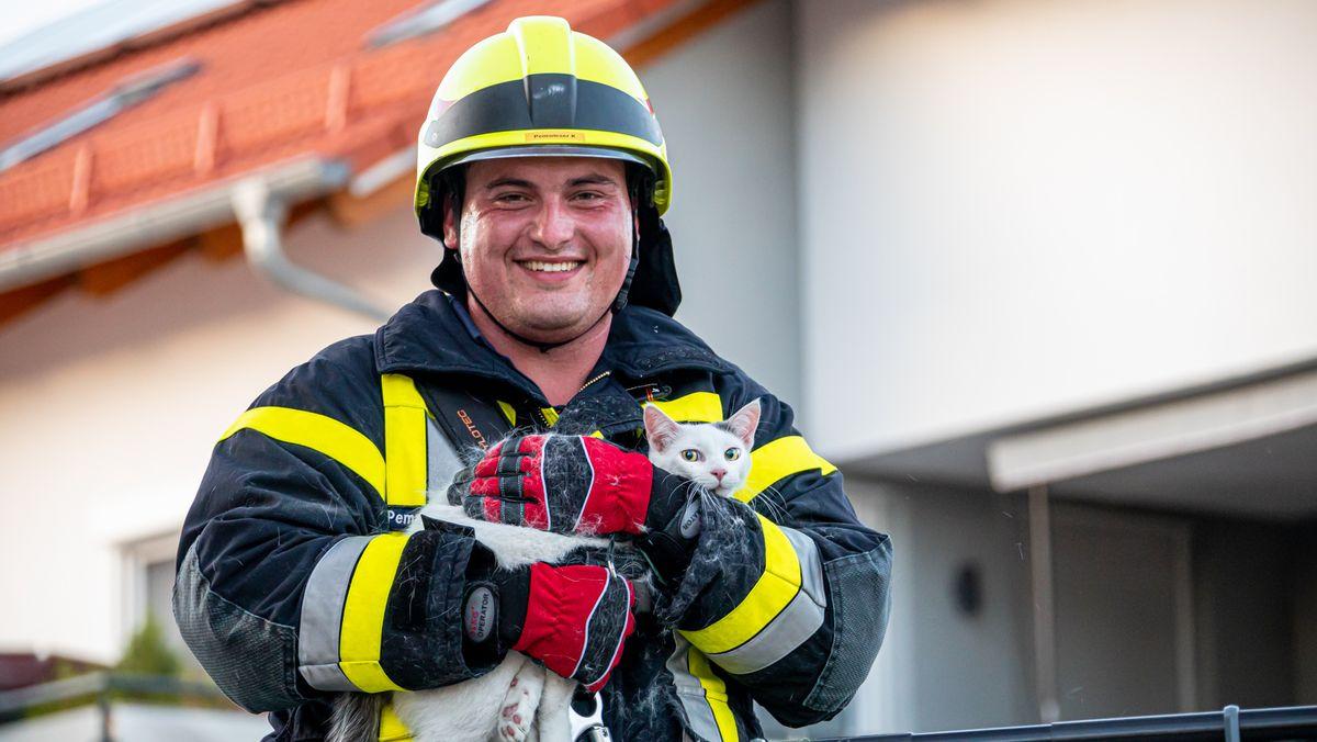 Feuerwehrmann Kevin Pemwieser in voller Montur mit Helm und Schutzanzug. Er hält Kater Oleg in den Armen, eine weiße Kurzhaar-Katze mit einem grauen Fleck zwischen den spitzen Ohren