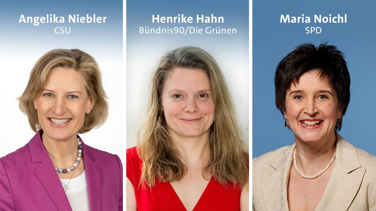 Niebler, Hahn, Noichl