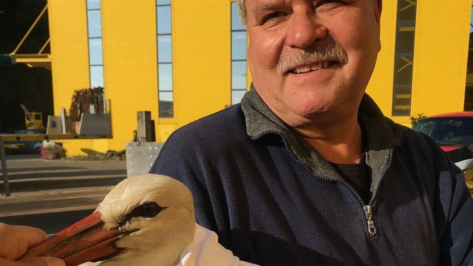 Ein Helfer hält den geretteten Storch im Arm.