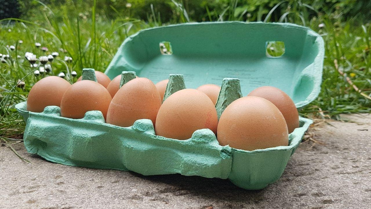 """Sonnendorfer hat Freilandeier """"aus dem Erdinger Land"""" verkauft. Die Eier stammen aber  von Höfen aus der Oberpfalz und Niederbayern."""