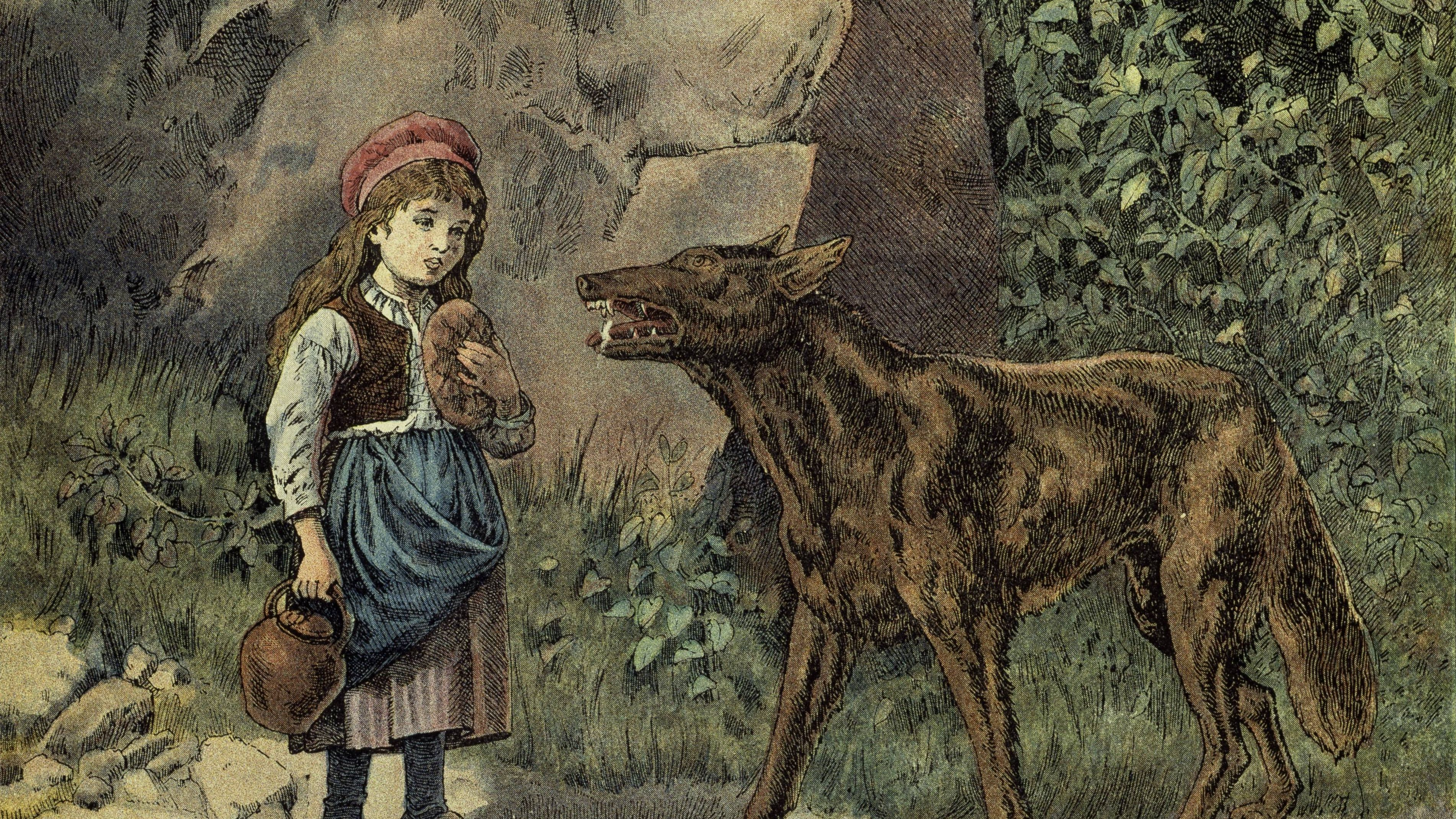 Rotkäppchen mit einer Kanne und Brot in der Hand steht dem Wolf im Wald gegenüber.