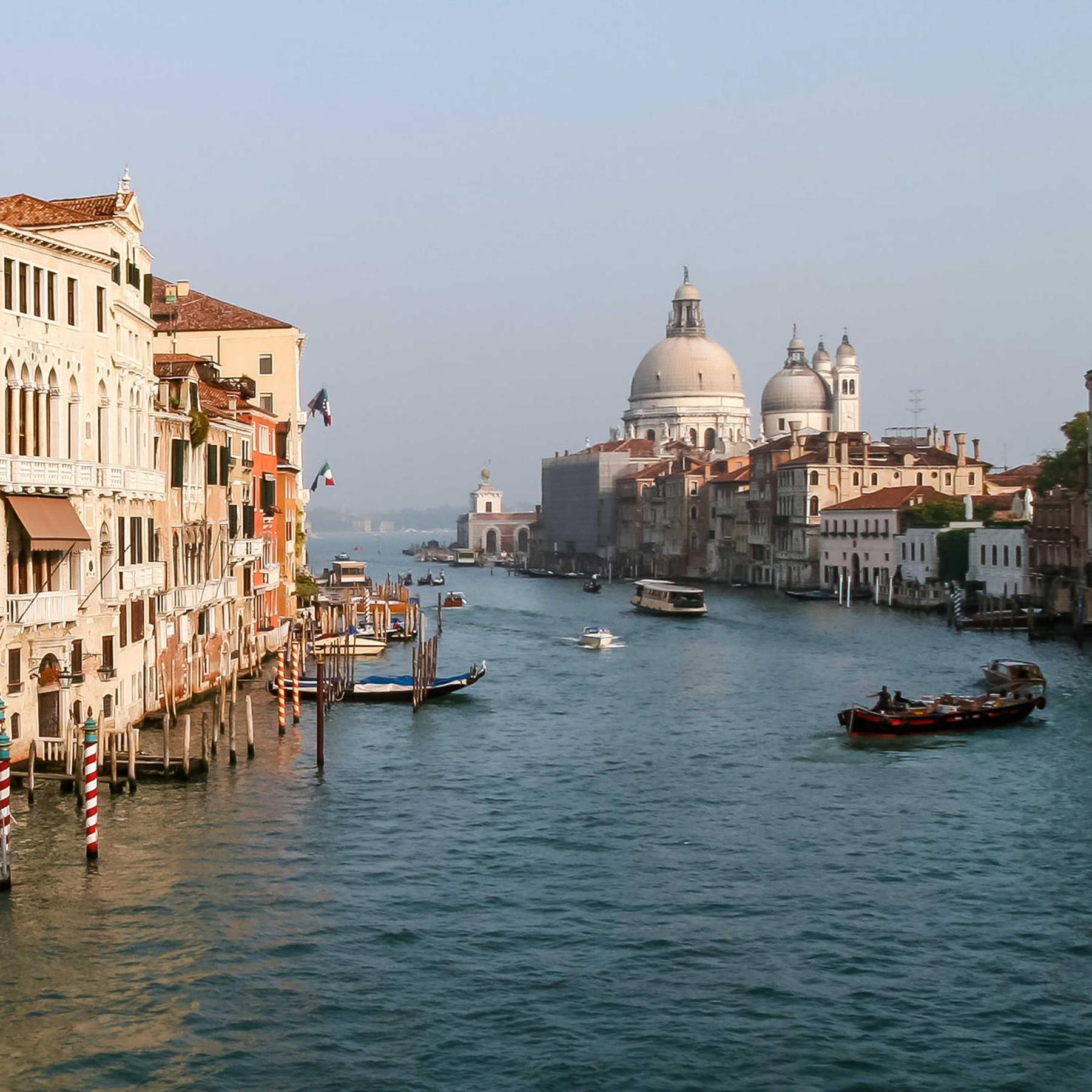 Venedigs Lagune - Eine einzigartige ökologische Nische