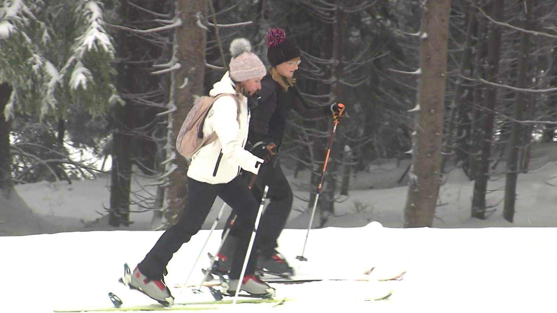 Zwei Langläuferinnen auf Ski im Wald