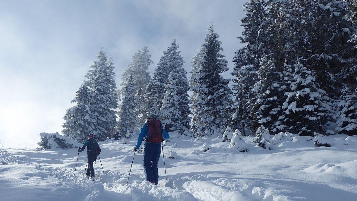 Frischer Schnee in den Bergen