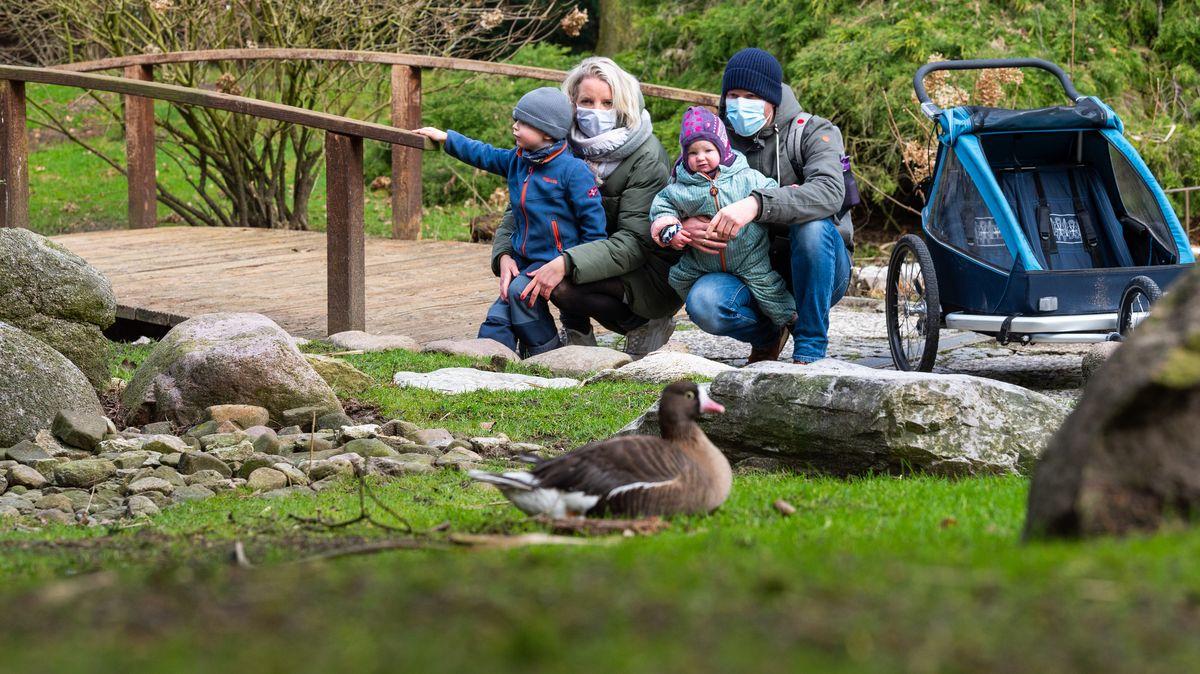 Eine Familie beobachtet Vögel in einem Tierpark (Symbolbild)