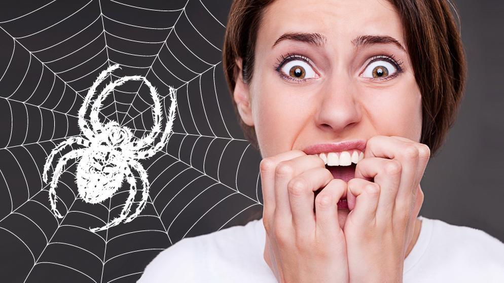 Kreischende Frau, dahinter illustriertes Spinnennetz und Spinne