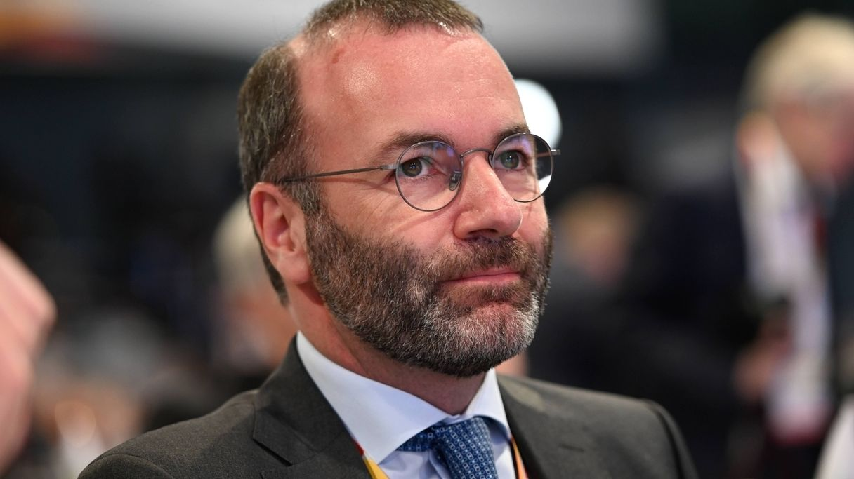 Manfred Weber, EU Politiker
