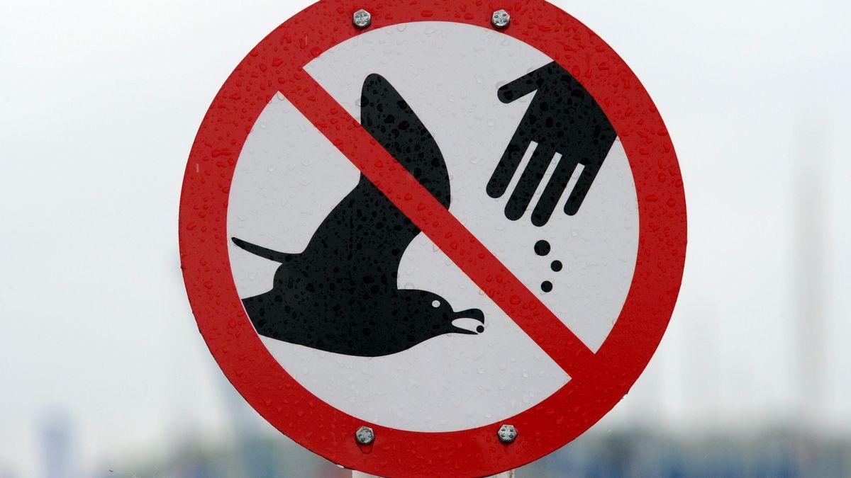 """Ein Schild mit dem Symbol """"Vögel füttern verboten"""""""
