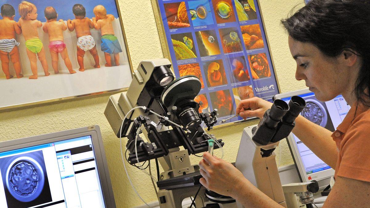 In einem Kinderwunschzentrum steht eine Laborassistentin am Mikroskop