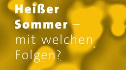 Heißer Sommer – mit welchen Folgen? | Bild:BR