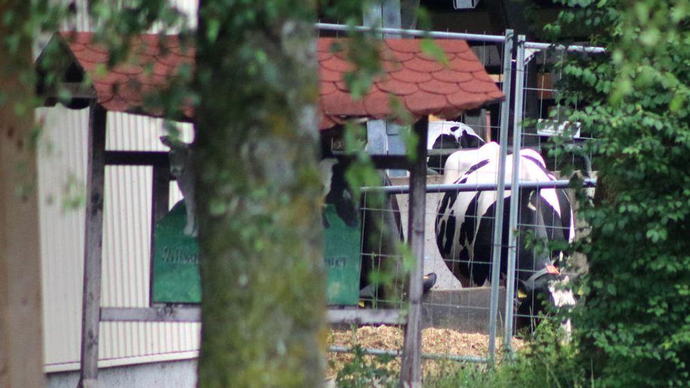 Ein Sprecher der Memminger Staatsanwaltschaft bestätigte die Razzia in dem Unternehmen. | Bild:dpa-Bildfunk / Benjamin Liss