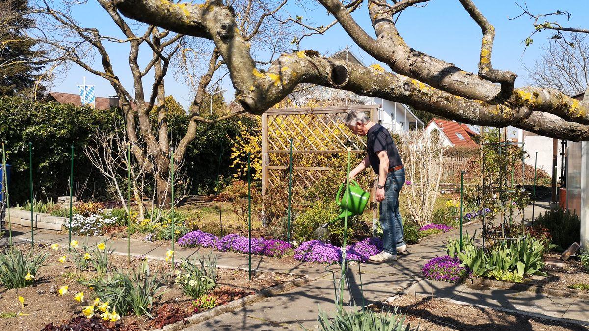Das Coronavirus hat auch Auswirkungen auf die Kleingärtner, wie hier in einer Kleingartenanlage im Münchner Nord Osten.