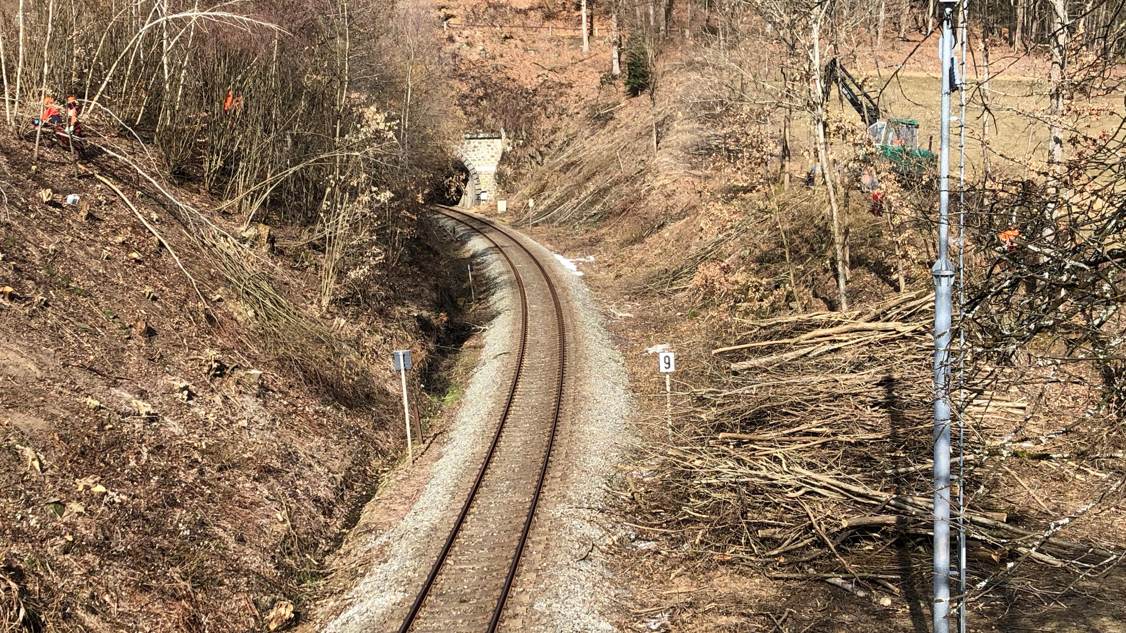 Streckenabschnitt der Waldbahn
