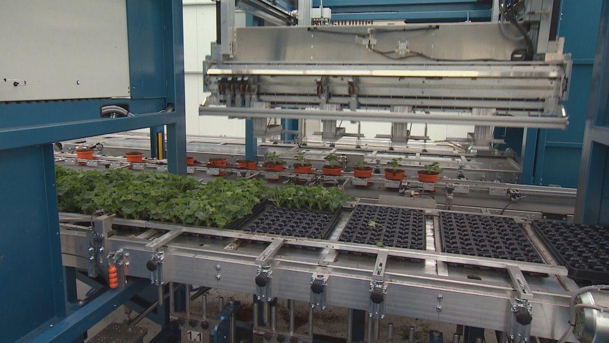 neu angeschaffte Maschine in der Gärtnerei