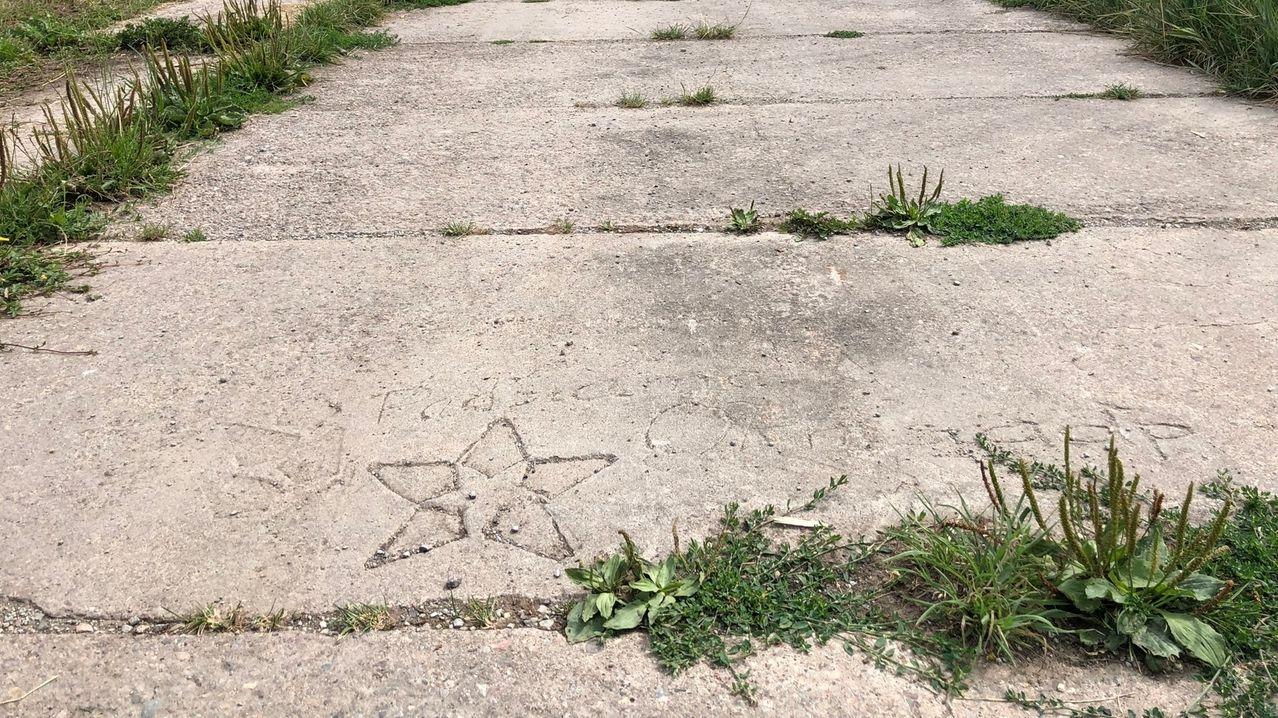 Eine Straße aus Betonplatten an der ehemaligen innerdeutschen Grenze.