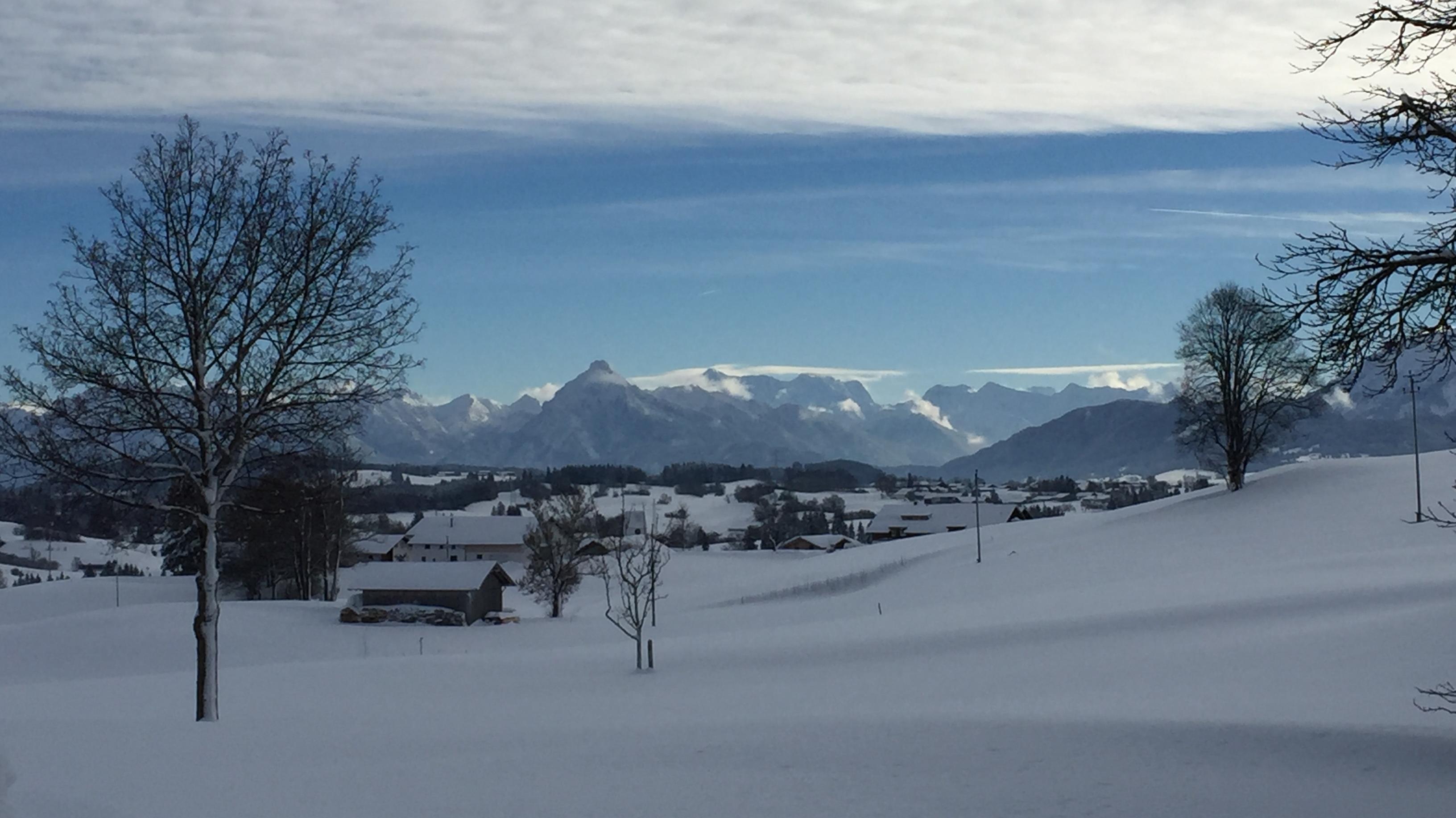 Blick von landwirtschaftlichem Weiler Bichel bei Maria Rain, Gemeinde Oy-Mittelberg (Lkr. Oberallgäu) Richtung östliche Allgäuer Alpen.