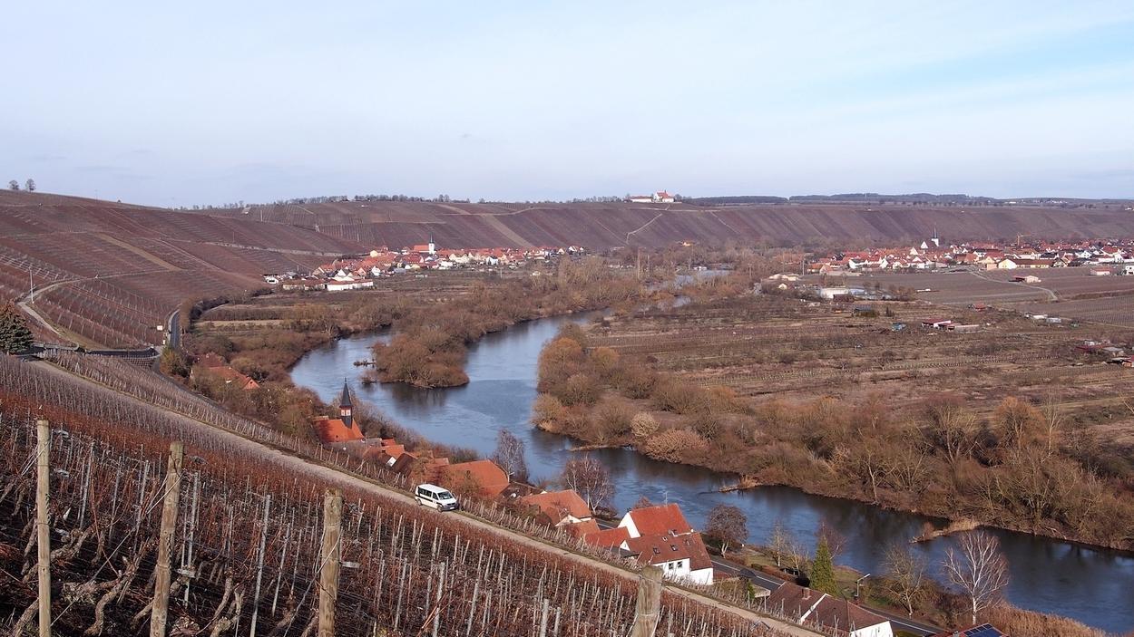 Blick auf die Mainschleife bei Escherndorf im Winter