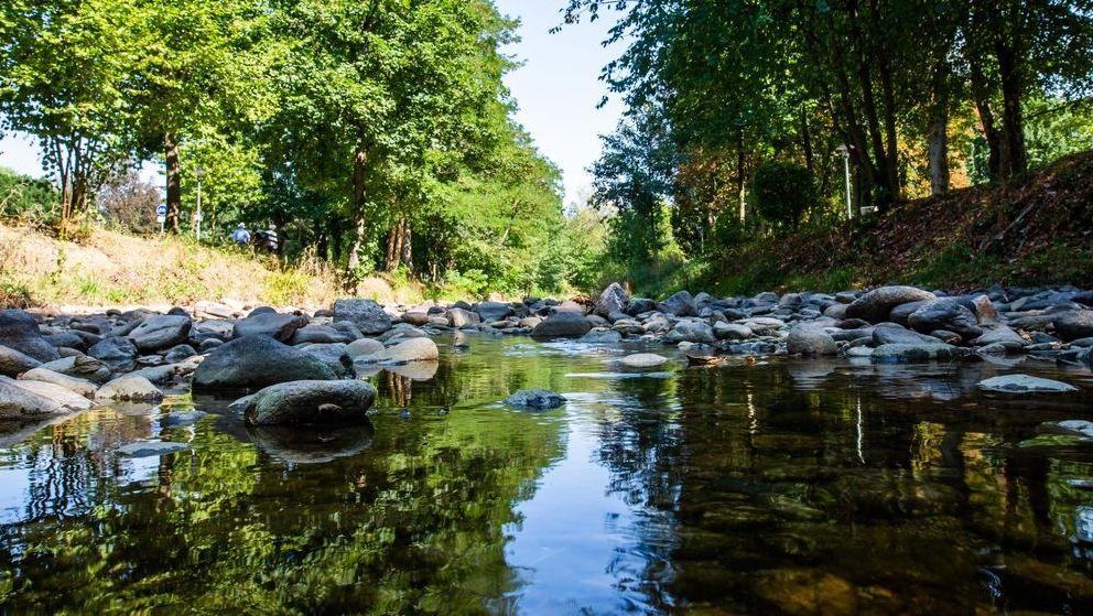 Ein Fluss führt aufgrund anhaltender Trockenheit nur noch wenig Wasser.