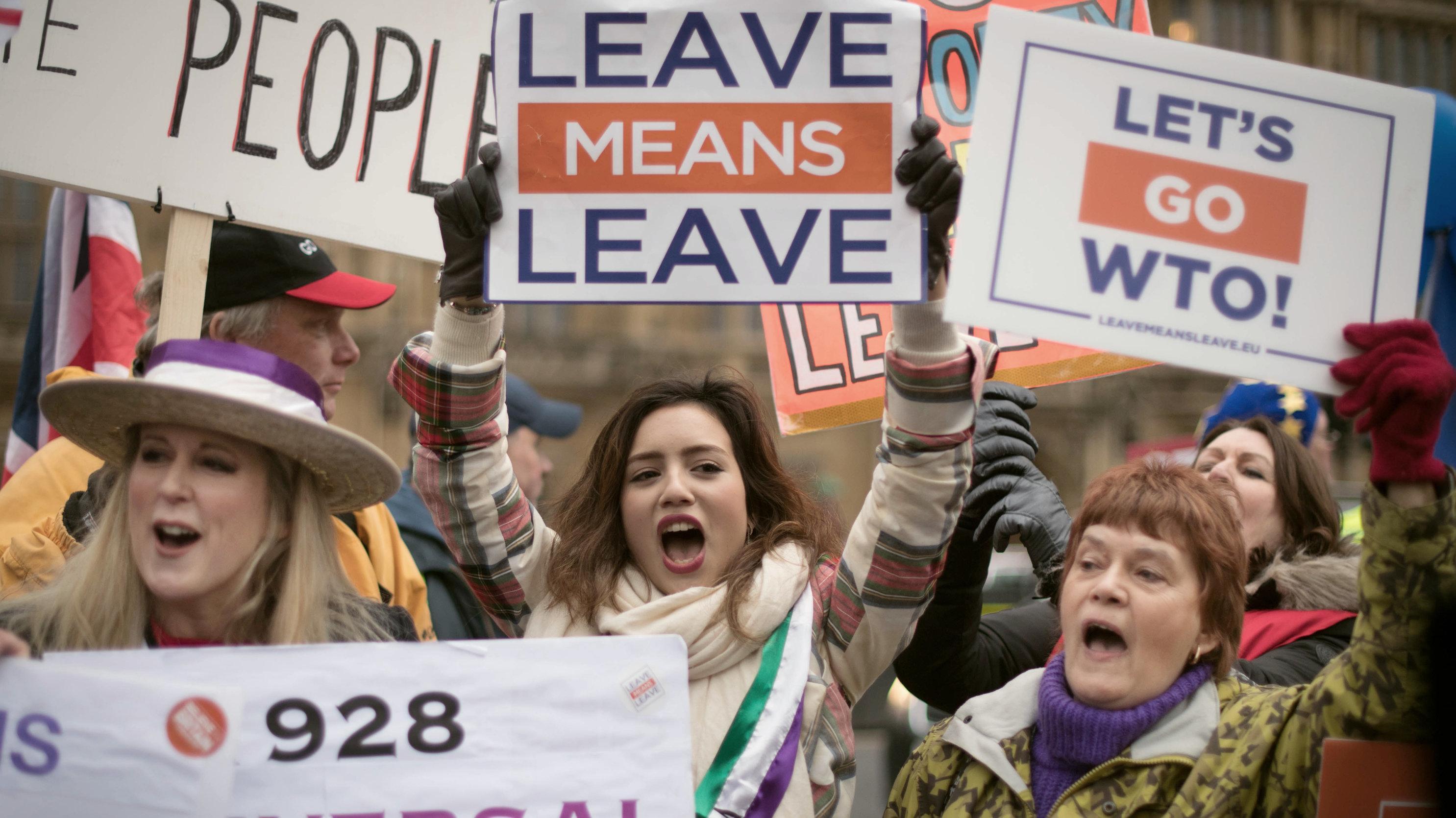 Brexit Anhänger demonstrieren mit Plakaten