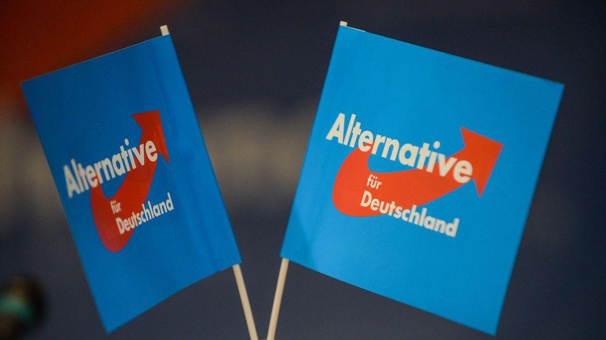 """Auf zwei blauen Fähnchen steht """"Alternative für Deutschland""""."""