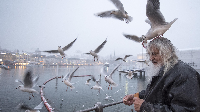 Schweiz, Luzern: Kari Engeler aus Luzern füttert die Möwen am Seebecken während eines Schneetreibens