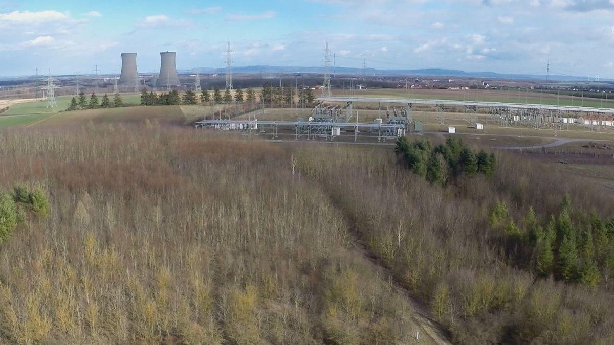 Der Gemeindewald von Bergrheinfeld