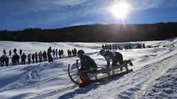 Ein Zweierteam vor Zuschauern auf der Piste des Schlittenrennens in Bad Hindelang im Oberallgäu | Bild:picture alliance/Karl-Josef Hildenbrand/dpa