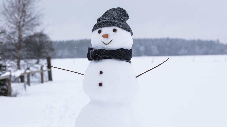 Ein Schneemann auf einem schneebedeckten Feld.