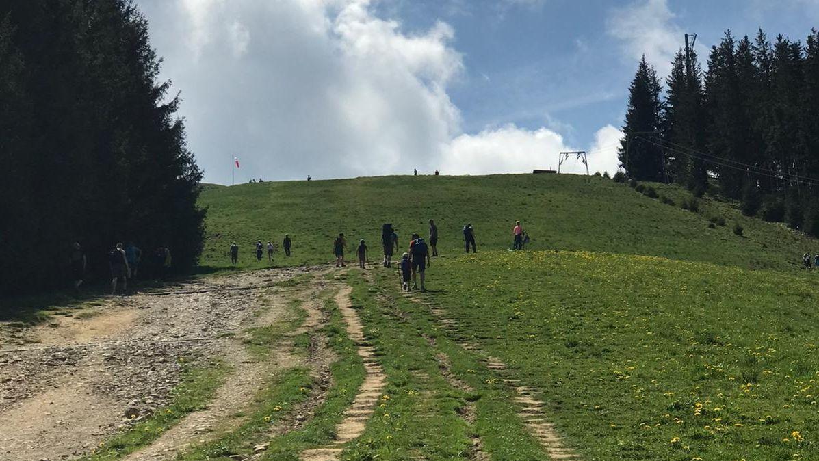 Wanderer laufen auf den Gipfel des Hörnle zu. Der breite Feldweg mündet im letzten Abschnitt in eine Wiese.