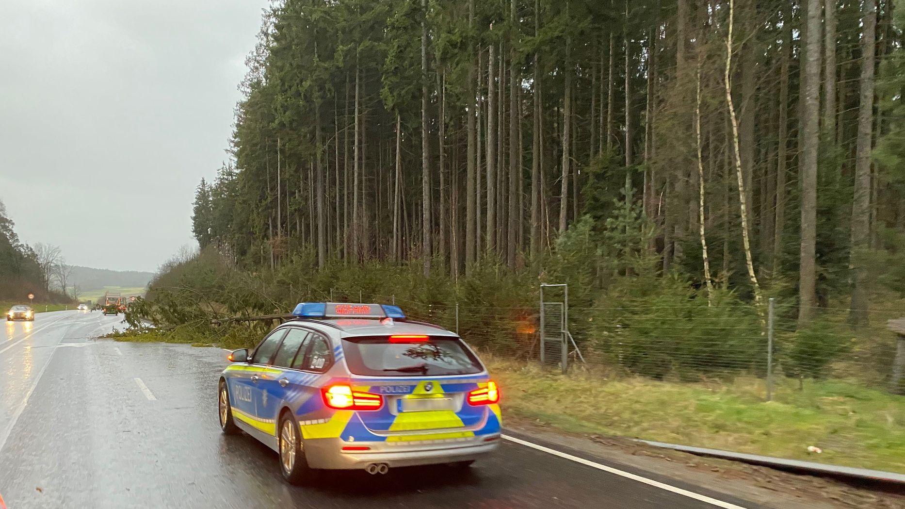 Umgestürzter Baum auf der B20 bei Weiden