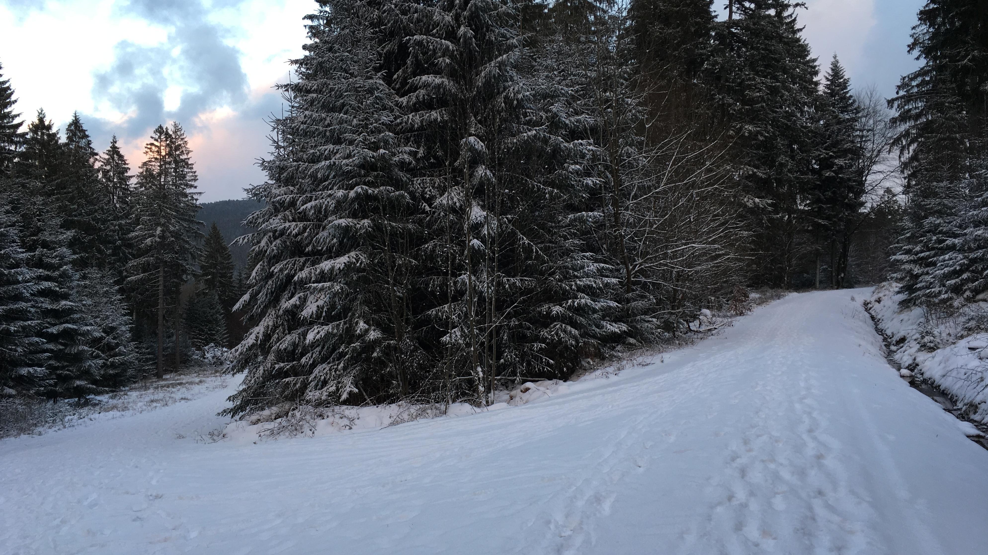 Unterwegs auf dem Winterwanderweg am Ochsenkopf