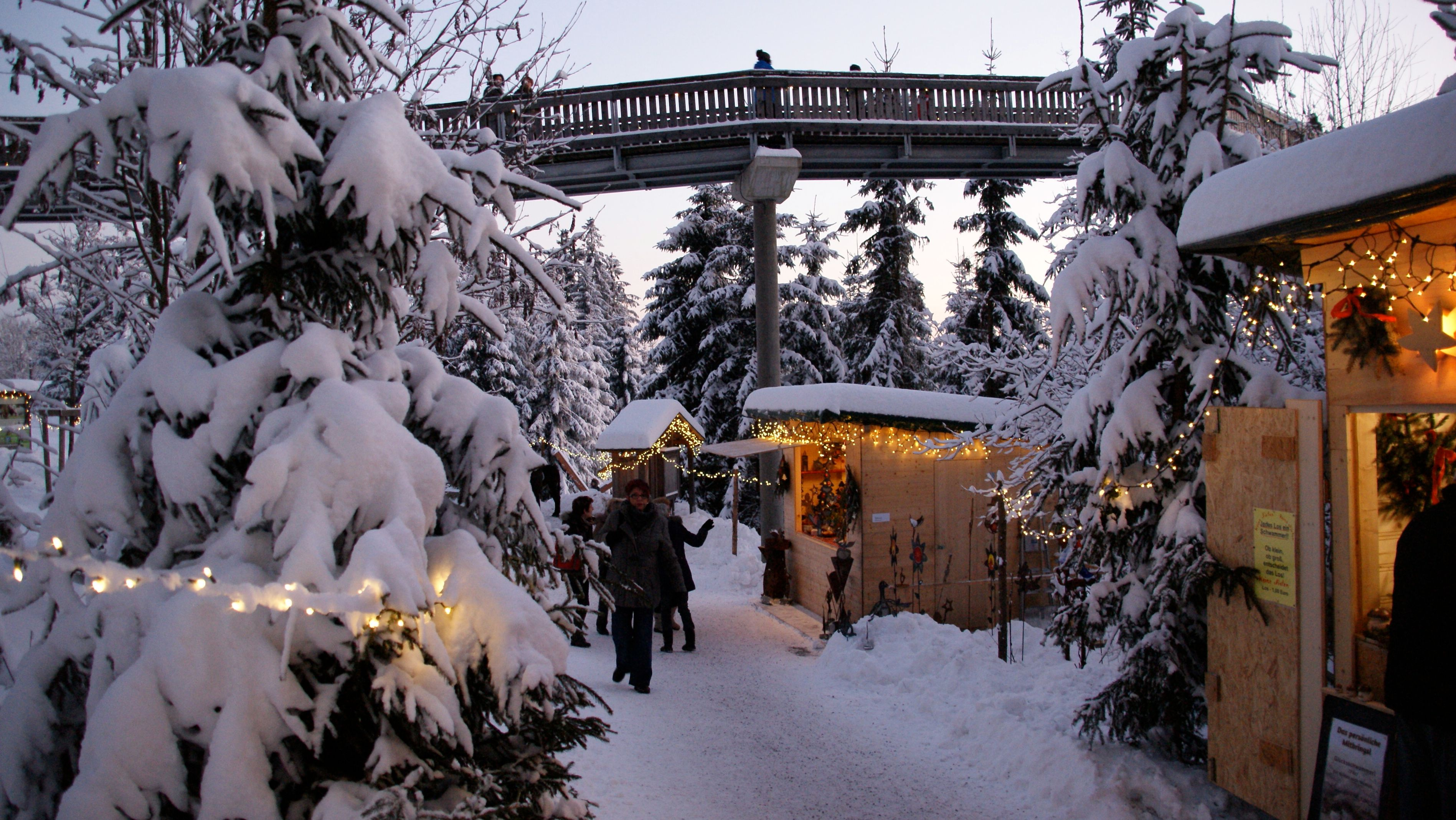Bummel durch den schneebedeckten Waldwipfelweg zum Christkindlmarkt