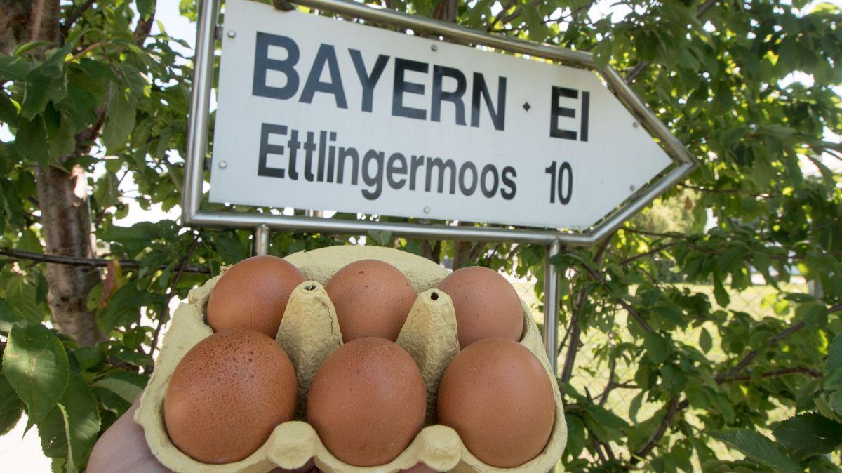 Schild mit der Aufschrift ´Bayern Ei`, darunter ein Karton mit rohen Eiern