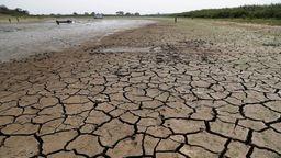 Laut Weltwetterorganisation (WMO) war 2020 eines der drei wärmsten je registrierten Jahre. Viele Flüsse vertrockneten. Im Bild: der Río Paraguay   Bild:dpa/picture-alliance/ASSOCIATED PRESS/Jorge Saenz