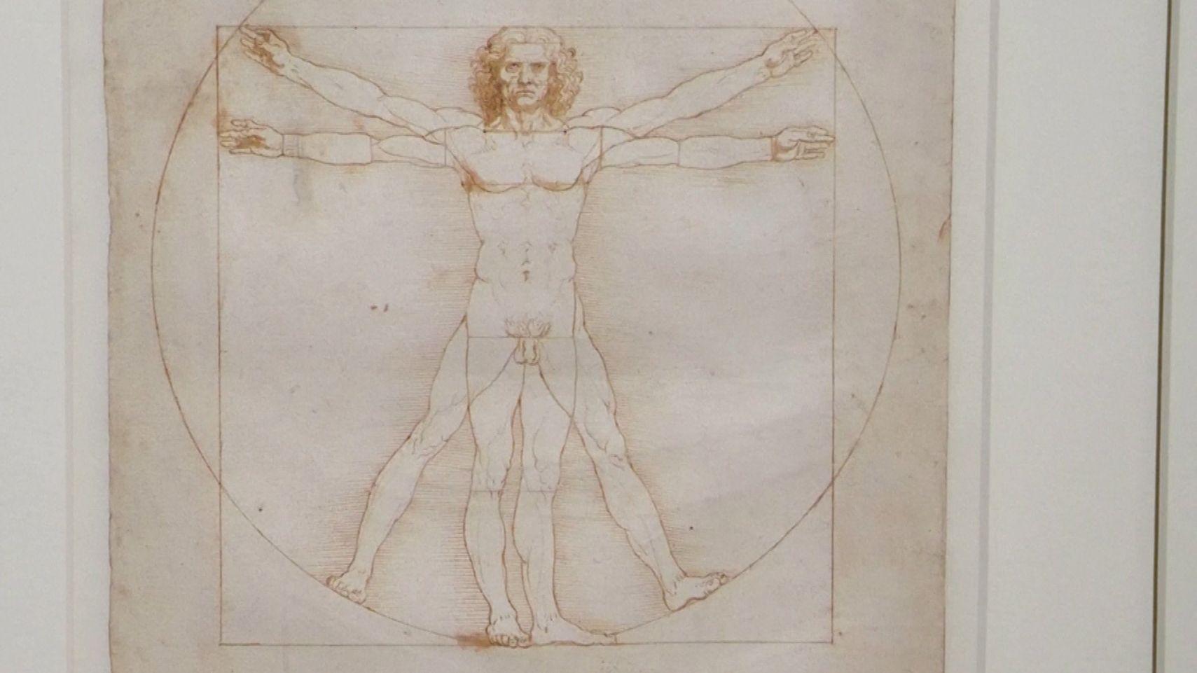 """Zeichnung des """"Vitruvianischen Menschen"""""""