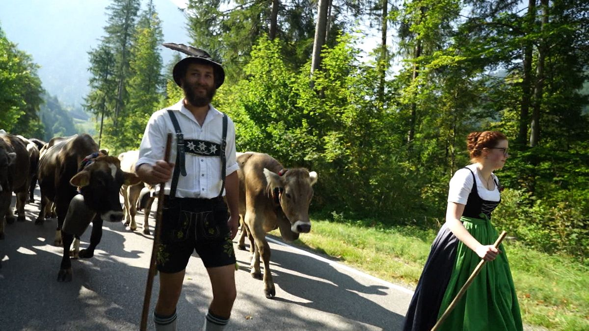 Borgias Blanz in Lederhose und eine Frau mit Dirndl gehen vor einer Herde Kühe